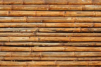 Close_up bamboo background texture with columns