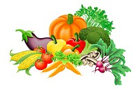 Illustration of an assortment of fresh tasty vegetables