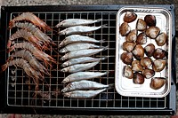 Grilled rack of fine seafood