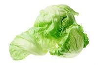 Iceberg Lettuce on White Background