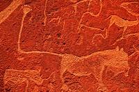 petroglyph texture