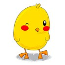 Cute yellow cartoon little chick winking and blushing