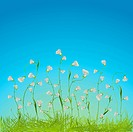 Graphic composition with beautiful white flowers and grass