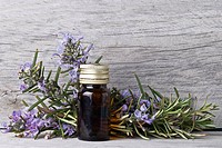 Rosemary branches and a bottle of rosemary essence on an old wooden shelf.