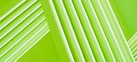 Full frame abstract of intersecting three dimensional green lines