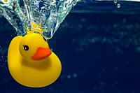 A rubber duck underwater