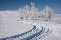 Road to Muradiye in snow, Van Province, Turkey
