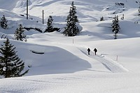 Two hikers on a snow laden path