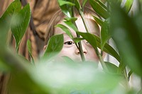Child peeking behind plant