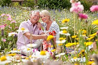 Smiling senior couple having picnic and eating strawberries in field of wildflowers