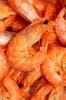 Some the prepared shrimps photographed close up