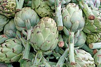 mature green artichokes with stems in the grocery store sales