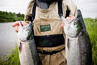 Fly fisherman holds up two Sockeye salmon on the Mulchatna River in the Bristol Bay area, Southwest Alaska, Summer