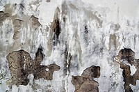 Detail of the surface _ old and damaged stucco _ plaster