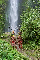 Timan Tumbo and Hale Johu, Huli Wigmen adorned in bird of paradise plumes, Tari Valley, Papua New Guinea, Oceania