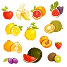 Fruits Set isolated. Vector Illustration.