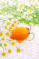 Cup of chamomile tea over white background