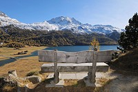 Bench at lookout point over Lake Silvaplana..Mountains in snow at autumn. Lake Silvaplana, St. Moritz, Silvaplanersee, Maloja District, Engadin, Engad...