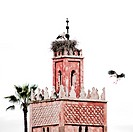 Minaret and storks, Marrakech.Flying stork landing on minaret of mosque, with partner stork on nest, Morocco