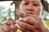 Indigenous woman from the Wichi Indians tribe creating handicrafts from the fibres of the Chaguar Bromeliad Bromelia hieronymi, the yarns are used for...