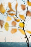 wind turbines viewed through Autumn leaves.In harmony with the natural world