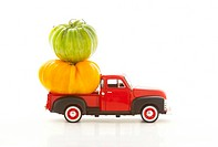 Heirloom tomatoes in a truck.
