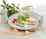 Pike terrine with a salmon filing, cold starter, France, recipe available for a fee