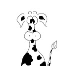 funny back and white cow on white background