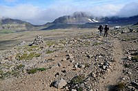 Hikers, Hælavíkurbjarg or Haelavikurbjarg, Hornstrandir, Westfjords, Iceland, Europe