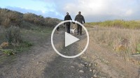Couple walking dogs on trail away from viewer, Thousand Oaks, California, USA
