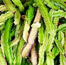 Vegetable stall in Sri Lanka with exotic Winged Bean also known as the Goa bean and Asparagus Pea