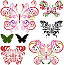 Butterfly elements set. Illustration vector.