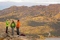 Group of hikers, sub alpine tundra, Indian summer, leaves in fall colours, autumn, near Fish Lake, Yukon Territory, Canada