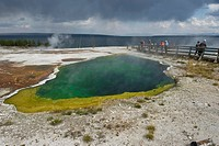 Geyser, West Thump Geyser Basin, Yellowstone National Park, Wyoming, USA