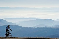 Mountain biker on Mt Belchen, Southern Black Forest, Black Forest, Baden-Wuerttemberg, Germany, Europe