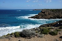 Cliffs, steep coast near Arenal d´en Castell, Minorca, Menorca, Balearic Islands, Mediterranean Sea, Spain, Europe
