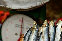 Dried fish and a scale at a market _ Puerto Galera.
