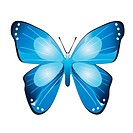 Isolated blue butterfly on a white background. Vector.