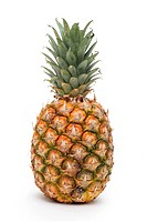 Ripe pineapple with leaves on a white background