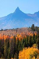 Beautiful fall scene in Grand Tetons National park