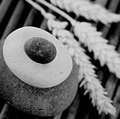 stack of balanced zen stones and wheat black and white image