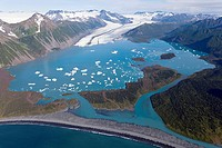 Bear Glacier. Aerial view over a proglacial lake towards Bear Glacier upper centre, white and the Harding Icefield upper left in the distance. Recessi...