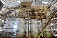 Oil palm processing factory. This factory processes the fruit of the oil palm family Arecaceae to extract the oils it contains, which are then used as...