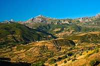 Typical mountain landscape with small fields and olive trees, Rif Mountains, northern Morocco, Morocco, Africa