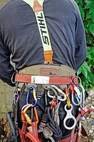 Tree climber with equipment, hooks, ropes, safety devices, tree care services, PublicGround
