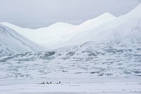 Cross country skiiers with pulkas in front of the mountains of Adventdalen, Longyearbyen, Spitsbergen, Svalbard, Norway, Europe