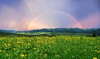 Rainbow over a landscape with a meadow and mountains