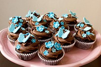 Pink plate of cupcakes with chocolate frosting swirl and blue butterfly and flower decorations on