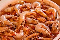 Shrimps on water
