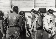 A group of German prisoners reading the bilingual announcement of the Germany capitulation in George G. Meade concentration camp. Fort Meade, May 8, 1...
